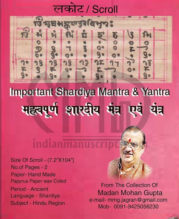 Important Shardiya Mantra & Yantra