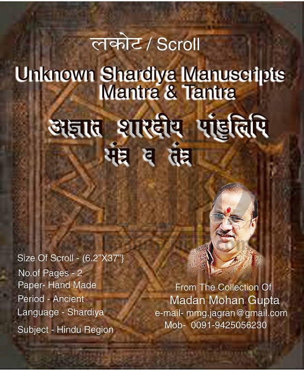 Unknown Shardiya Manuscripts Mantra & Tantra