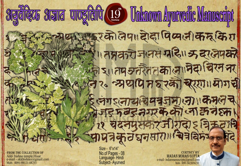 Unknown Ayurvedic Manuscript